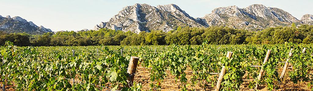 Blog - ma villa en provence - location villas provence