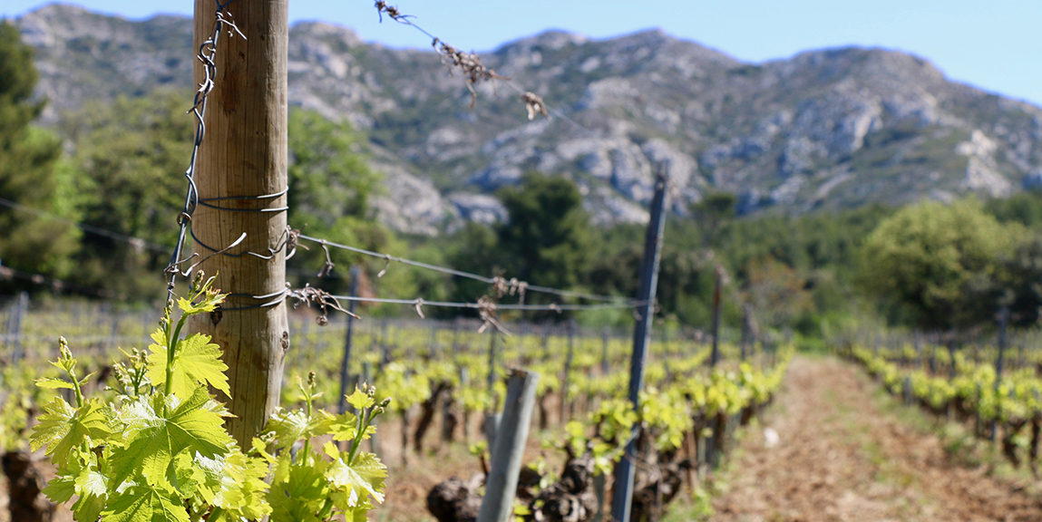 Location de villas en provence pour les vacances l Ma villa en Provence